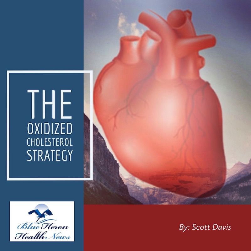 The Oxidized Cholesterol Strategy Ebook